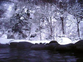 20081228-30秋の宮温泉鷹の湯-川渡温泉宿みやま 051.jpg